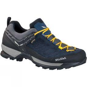 Mens Mountain Trainer GTX Shoe